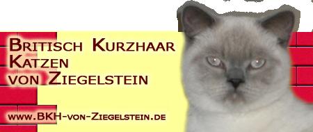 BKH-von-Zieglestein Banner